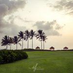 Park Hyatt Goa 0006-2